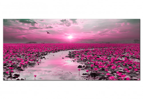 Lilies and Sunset (1 Part) Wide