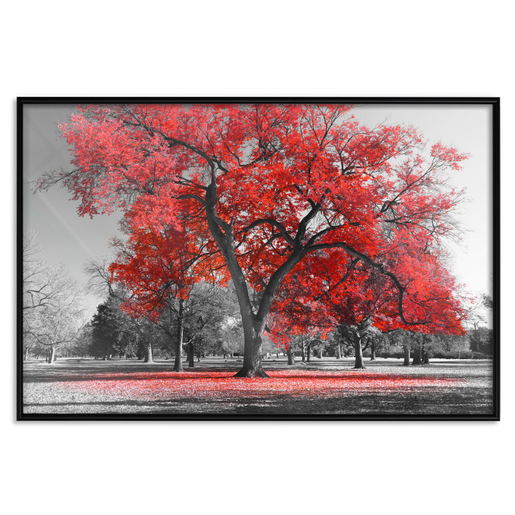 Autumn in the Park (Red) [Poster]