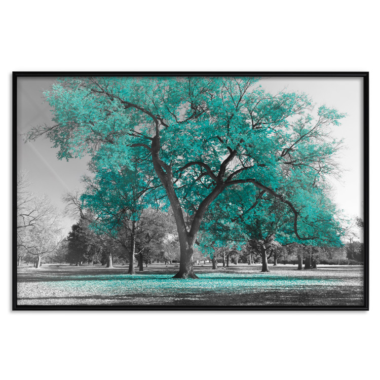 Autumn in the Park (Turquoise) [Poster]