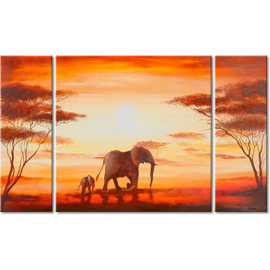 Los elefantes en África  XXL