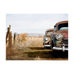 Wall Mural Two old, American cars 61124 additionalThumb 1