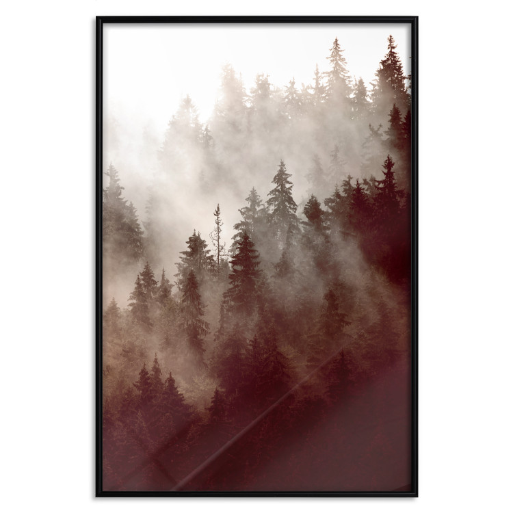 Brown Forest [Poster]