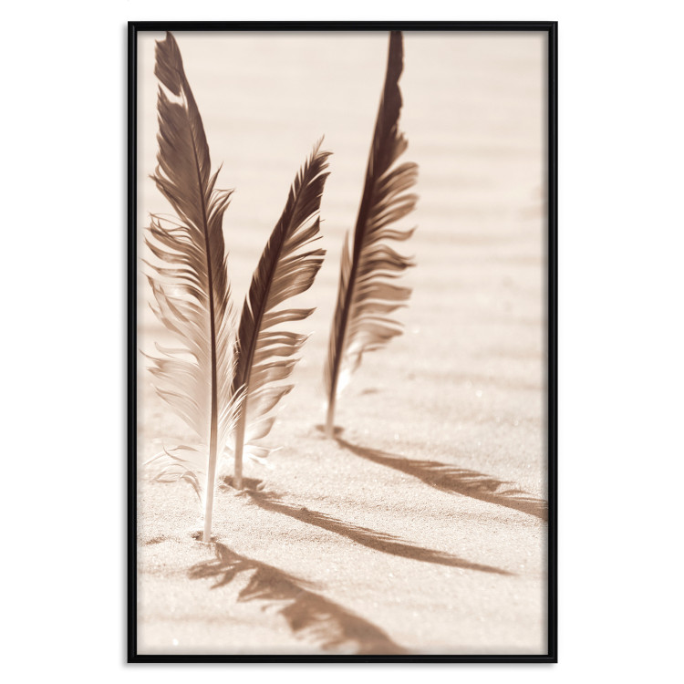 Shady Feathers [Poster]