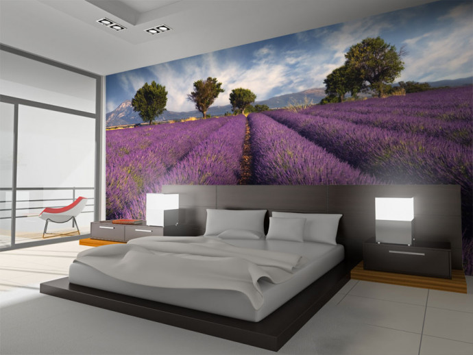 Foto Tapete Lavender field in Provence, France 60745