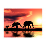 Wall Mural Elephants: family 61345 additionalThumb 1