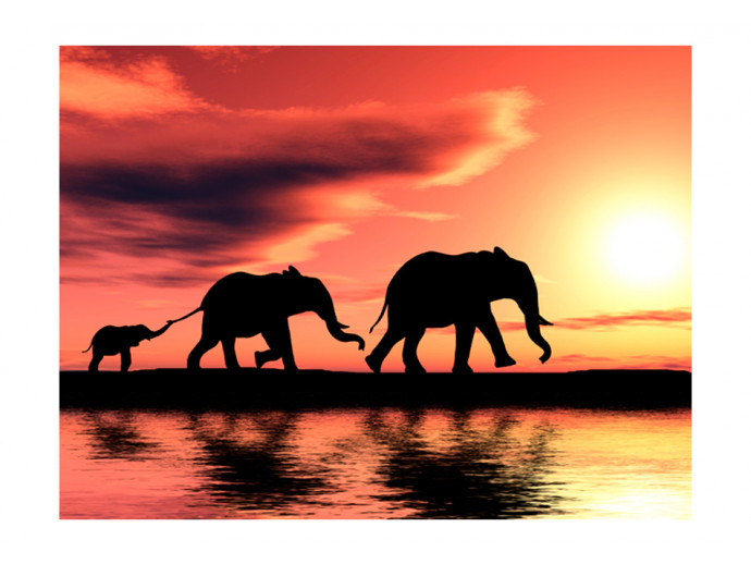 Wall Mural Elephants: family 61345 additionalImage 1