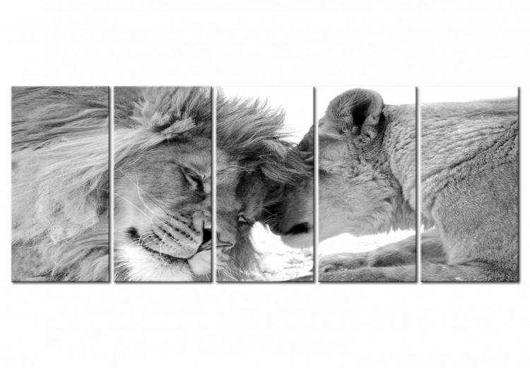Lion's Love I