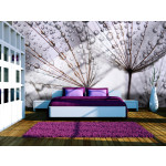 Wall Mural Dandelion and morning dew 60646
