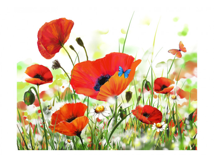 Fotomural decorativo Country poppies 60656 additionalImage 1