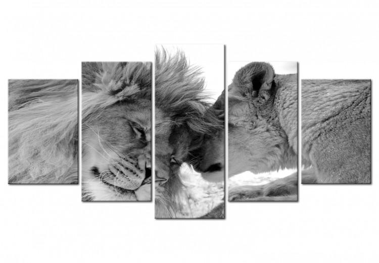 Friendly Lions