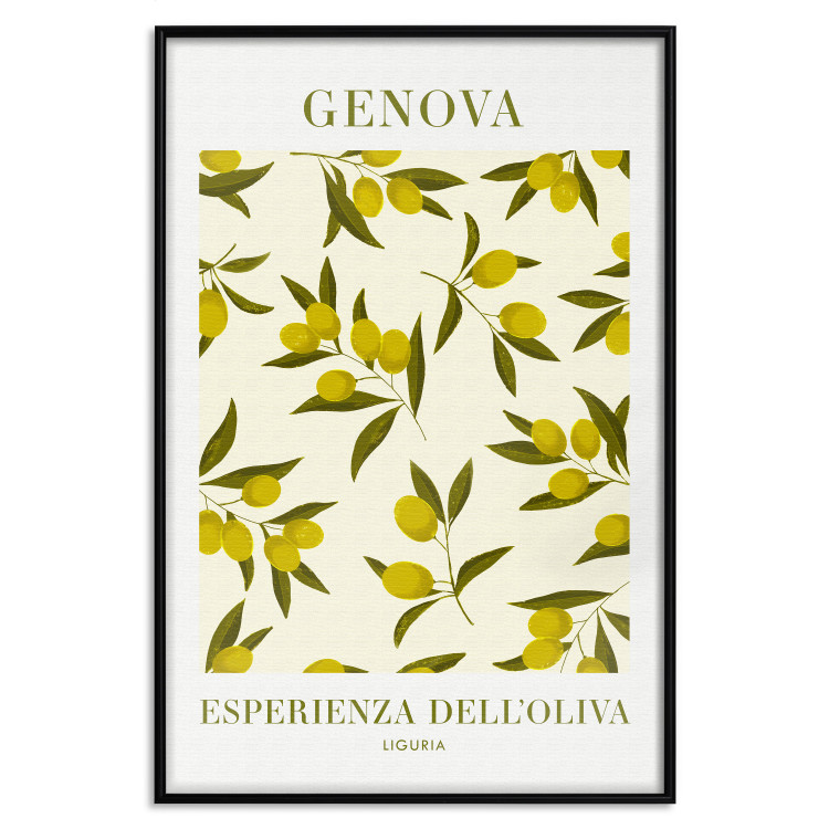Olives From Liguria [Poster]