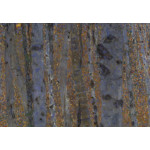 Art Reproduction Beech Forest I 52237 additionalThumb 2
