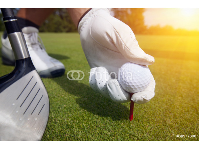 hand placing a tee with golf ball 64238