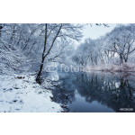 Winter landscape with river in forest 64238