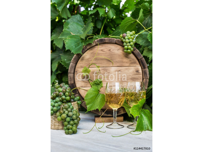 Wine with barrel on vineyard 64238