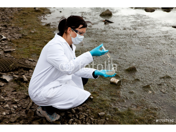 environmental pollution - research 64238