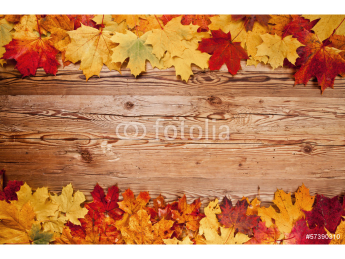 Autumn leaves on wood 64238