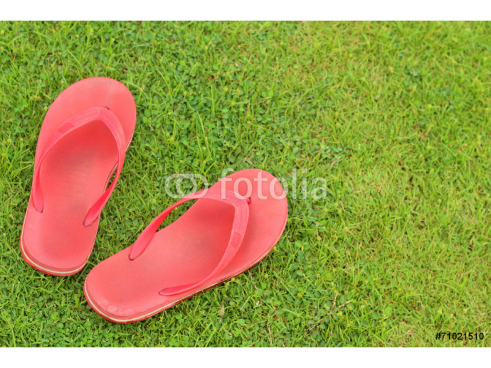 Red slippers lay on the the green grass. 64238