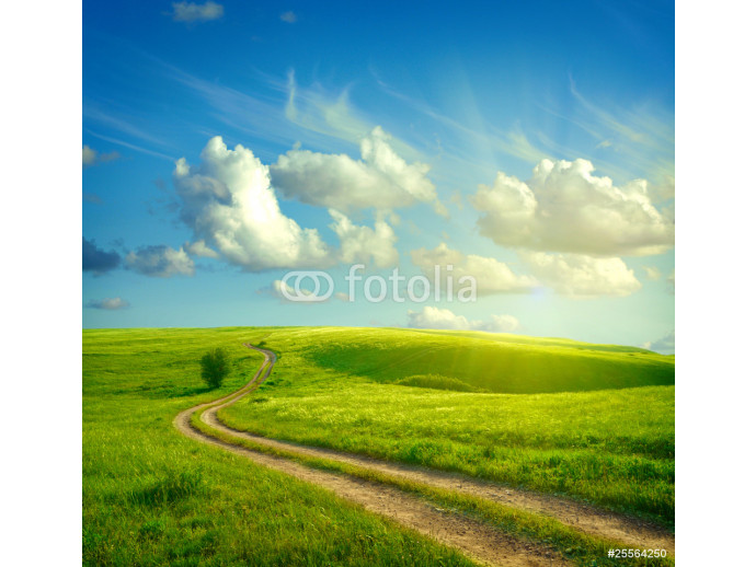 Summer landscape with green grass, road and clouds 64238