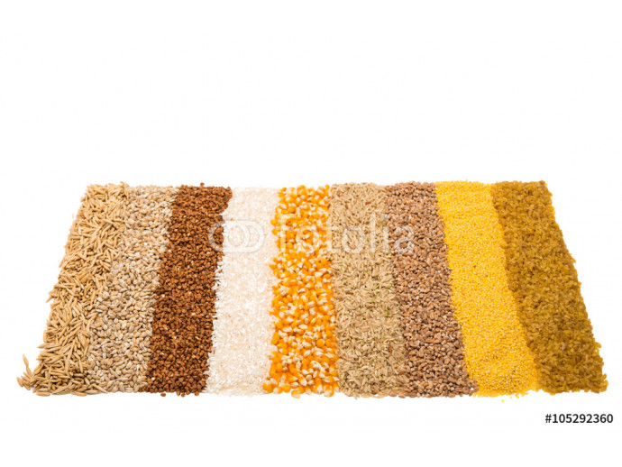 Collection Set of Cereal Grains 64238
