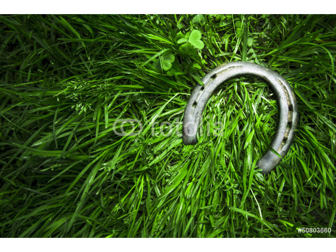 Iron horseshoe on green grass 64238