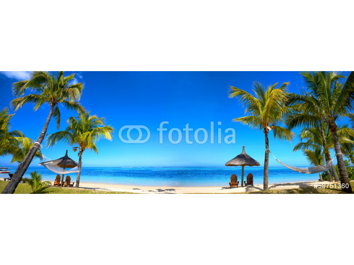Tropical beach panorama with chairs and umbrellas 64238