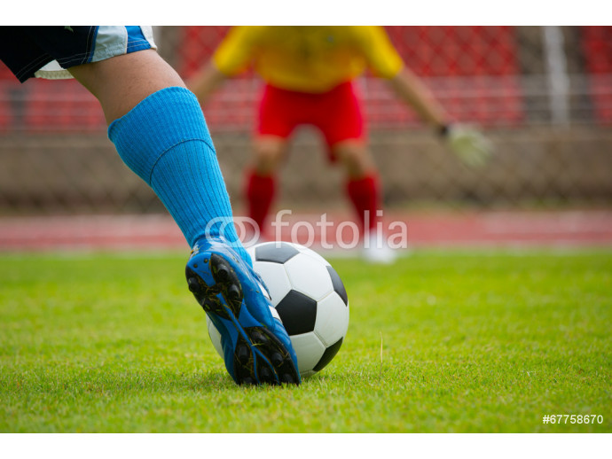 Football or soccer Goal defence 64238