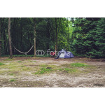 Blue Tent in Forest with Bicycle Against Tree and Hammock. 64238