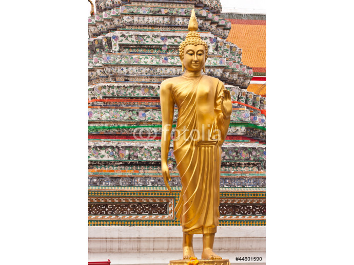 Beauty of standing Buddha image in Thailand 64238