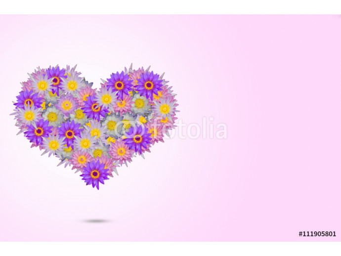 Pink purple heart shaped lotus flowers on pale pink background 64238