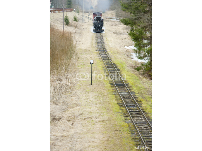 Fototapeta steam train, Ciernohronska Railway, Slovakia 64238
