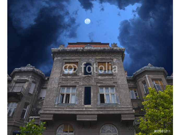 Old haunted house. Stormy clouds and moon 64238