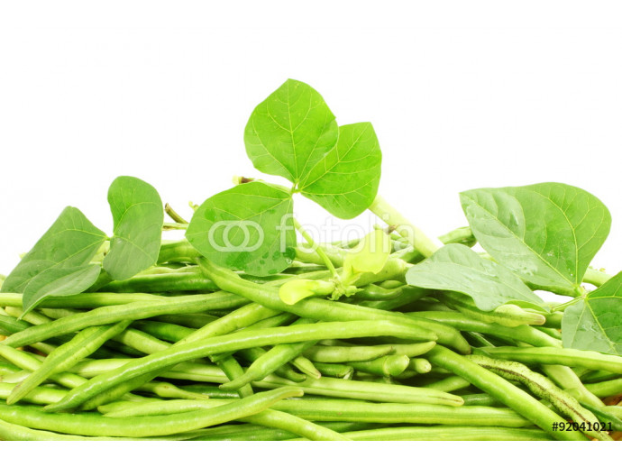 fresh green Black eye peas beans with plant closeup in white background 64238