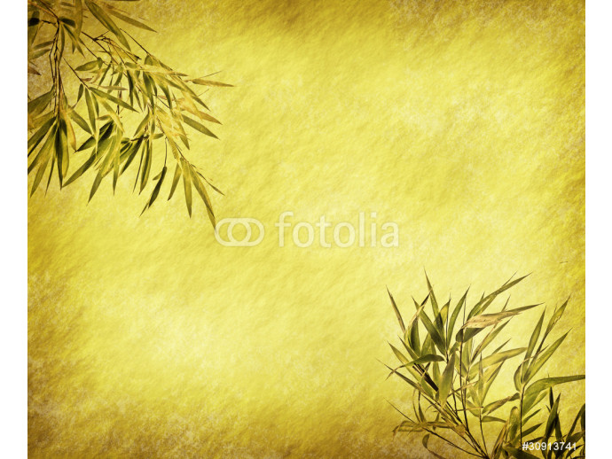 Grungy Background.old paper with bamboo branches 64238