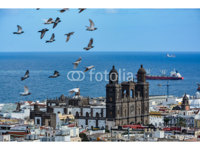 Cathedral of Santa Ana (Holy Cathedral-Basilica of the Canaries) in Las Palmas seen from a hill 64238