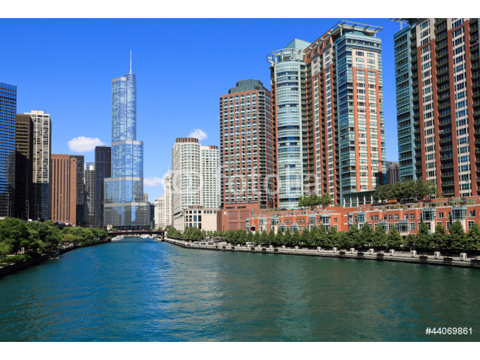 Beautiful Chicago River 64238