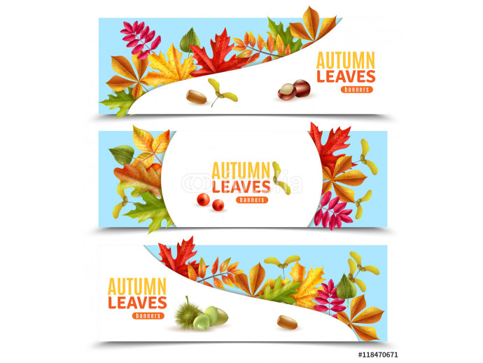 Autumn Leaves Banners 64238