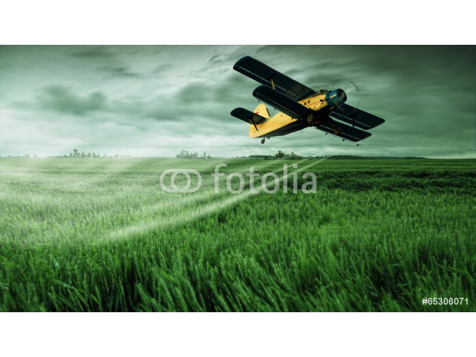 A crop dusting plane working over a field 64238
