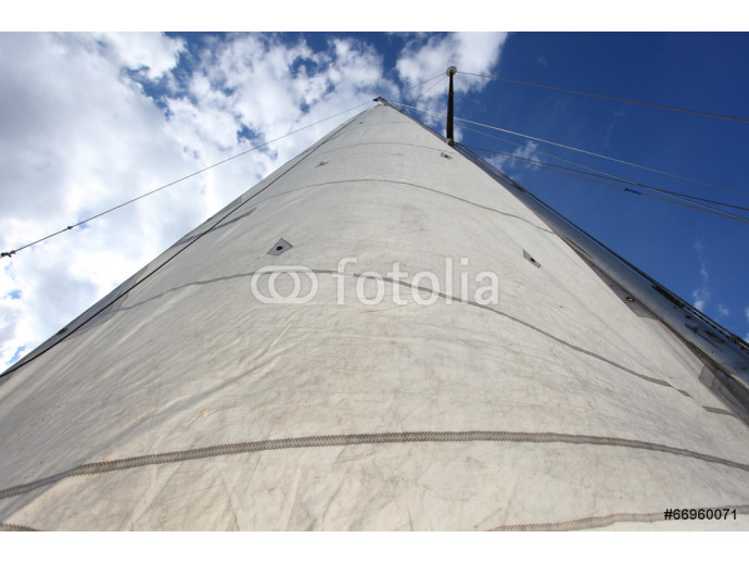 raised the white sails of yachts on the background of blue sky 64238