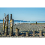 Old Pilings on Stony Beach at Low Tide. Copy space. 64238