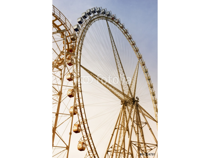 Roller Coaster and Ferris Wheel 64238
