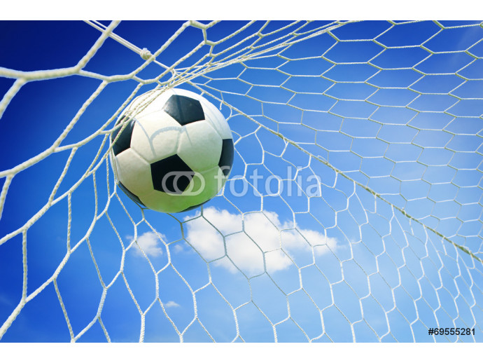 soccer ball in goal with blue sky 64238
