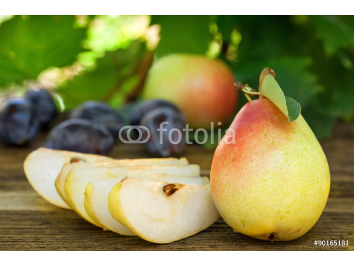 Fresh ripe pears, plums and apples 64238