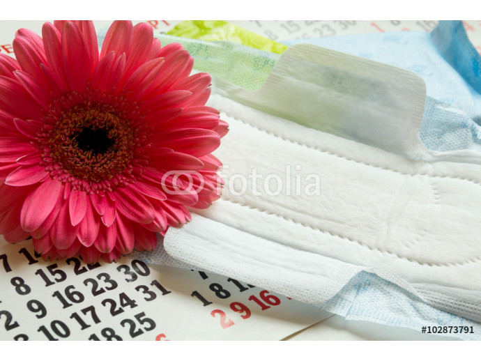 Woman critical days, menstrual period, pad, napkin, cotton tampons, sanitary pads, critical days, menstrual cycle, Menstruation calendar, flower. 64238