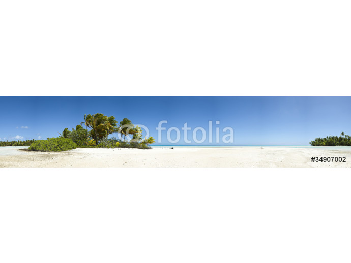 Palm tree and white sand beach panoramic view 64238