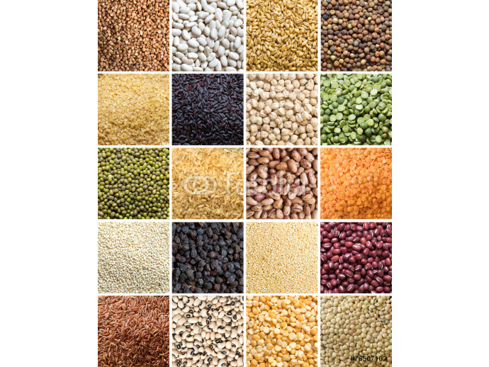 Collage of legumes and cereals 64238