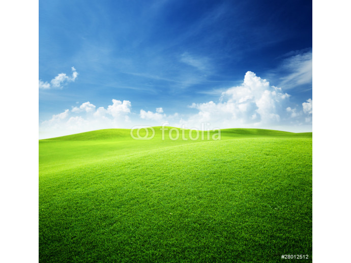 green field and blue sky 64238