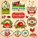 Collection of vintage retro farm labels and design elements 64238