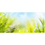 abstract art spring Nature background 64238