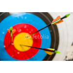 Arrows in the competition hit the target 64238